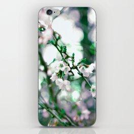 #62 iPhone Skin