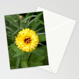 Yellow Pot Marigold Stationery Cards