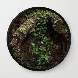 Rainforest Decay Wall Clock