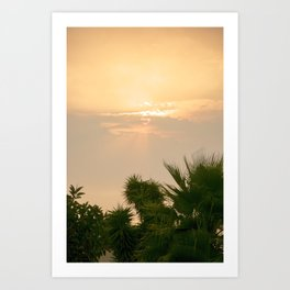 cloudy sky in the oasis Art Print