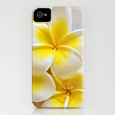 Plumeria Blossoms Slim Case iPhone (4, 4s)