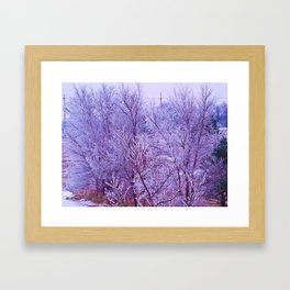 Snow Covered Trees Framed Art Print