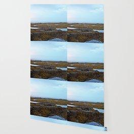 Tidal Shelf and the Fog Wallpaper