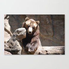 Posing for the Camera Canvas Print