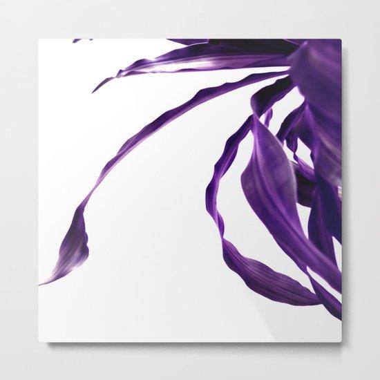 Purple tropical leaves. Metal Print