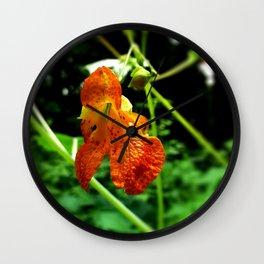 Orange Jewelweed Wall Clock