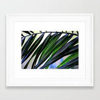 palm Framed Art Prints featuring palm by  Agostino Lo Coco