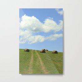 Farm Road #001 Metal Print