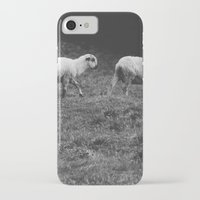 sheep iPhone & iPod Cases featuring Sheep by Pati Designs
