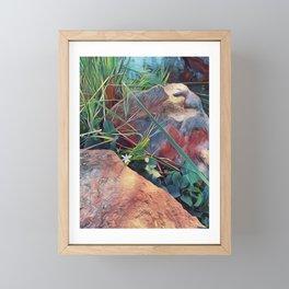 among the stones Framed Mini Art Print
