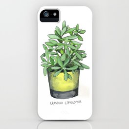 Crassula Cephalopora iPhone Case