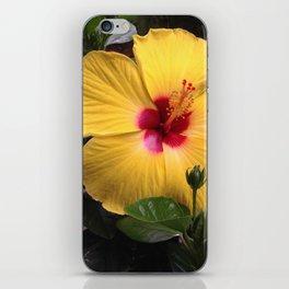 Habiscus yellow flower power iPhone Skin
