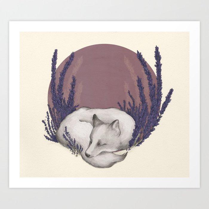 Fox & Lavender Kunstdrucke