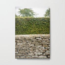 Wall and Hedge Metal Print