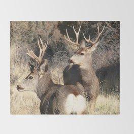 Watercolor Mule Deer Throw Blanket