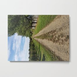 On the way to home, Winery landscape Metal Print