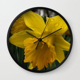 Spring is Almost Here Wall Clock
