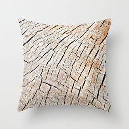 Cracks in wood, textures 59 Throw Pillow