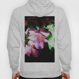 Floral Drama Hoody