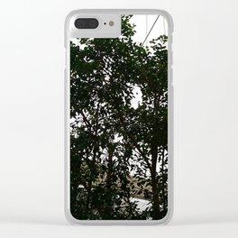 Indoor rainforest Clear iPhone Case