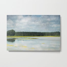Reflective Field Metal Print