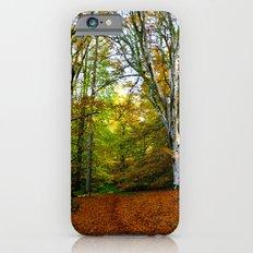 Autumn Trees Woodland Slim Case iPhone 6s