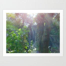 Florida Waterfall Landscape Art Print