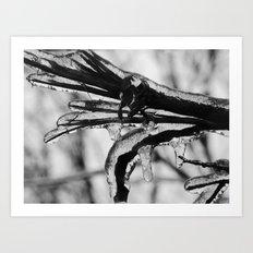 frozen branch II Art Print