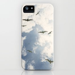 Flying Gulls iPhone Case