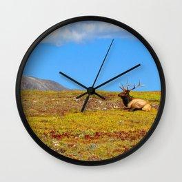 The Elk of Colorado Wall Clock