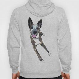 Chelsea Dog Hoody