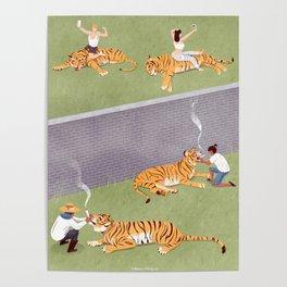T-hig-er Poster