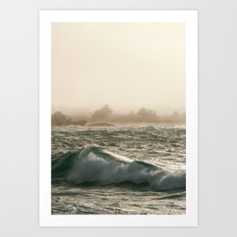 Tropic Haze I Art Print