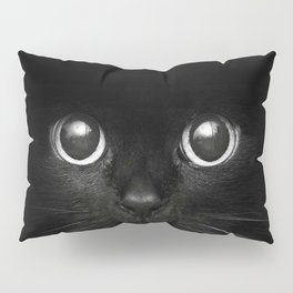 Black Cats are Good Luck Pillow Sham