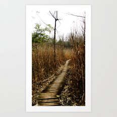On The Bruce Trail Art Print