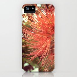 salmon iPhone Case