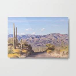Down Desert Roads, IV Metal Print