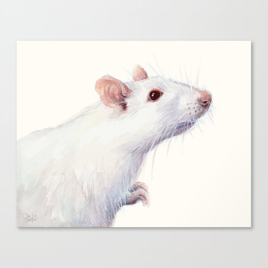 White Rat Watercolor Albino Rat Animal Canvas Print