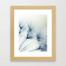 dandelion blue II Framed Art Print