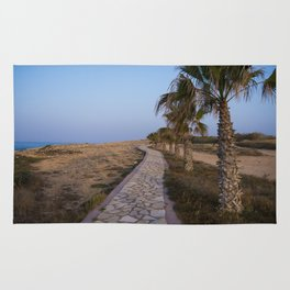 A Path Along the Sea Rug