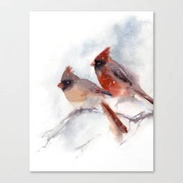 Northern Cardinal Birds Couple Canvas Print