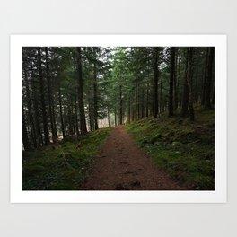Take the fox's path - Scotland Art Print