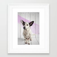 puppy Framed Art Prints featuring puppy by Michael Mann