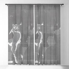 Galaxy Cat Sheer Curtain