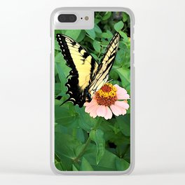 Butterfly on Zinnia 4 Clear iPhone Case