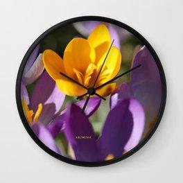 Krokusse 2 Wall Clock