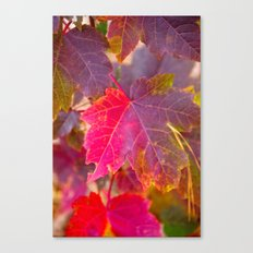 Fall Party Canvas Print