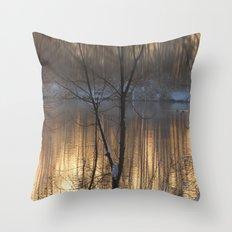 Lake Impressions 1 Throw Pillow