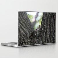 squirrel Laptop & iPad Skins featuring Squirrel  by Nick Douillard