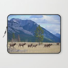 Bull Elk with his Harem Laptop Sleeve